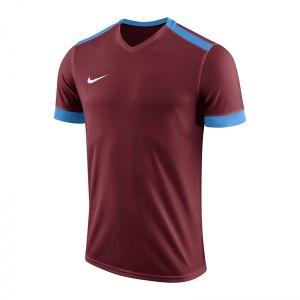nike-dry-park-derby-ii-trikot-kids-f677-trikot-shirt-team-mannschaftssport-ballsportart-894116.jpg