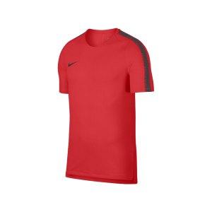 nike-breathe-squad-18-top-kurzarm-rot-f696-fussball-teamsport-textil-t-shirts-textilien-894539.jpg