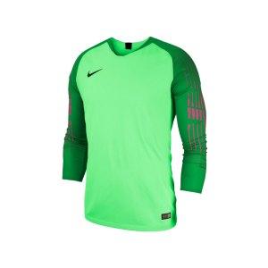 nike-gardien-ii-torwarttrikot-langarm-gruen-f398-fussball-teamsport-textil-torwarttrikots-jersey-898043.jpg