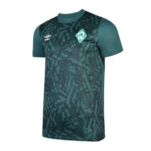 umbro-sv-werder-bremen-jersey-warm-up-t-shirt-fhnq-fanshop-mannschaft-verein-fussball-sportswear-90661u.jpg