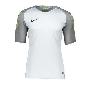 nike-promo-torwarttrikot-kurzarm-grau-f043-fussball-teamsport-mannschaft-ausruestung-textil-torwarttrikots-919759.jpg