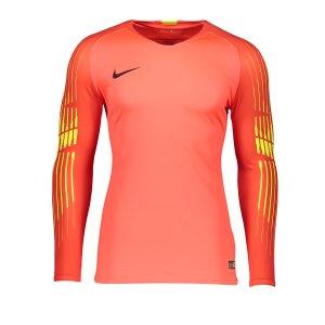 nike-promo-torwarttrikot-langarm-rot-f671-fussball-teamsport-mannschaft-ausruestung-textil-torwarttrikots-919771.png