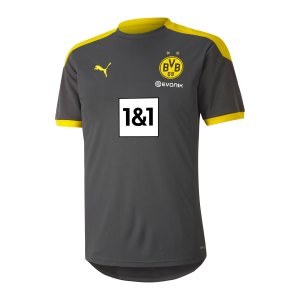 puma-bvb-dortmund-trainingstrikot-grau-f05-931127-fan-shop_front.png