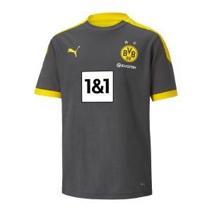 puma-bvb-dortmund-training-t-shirt-kids-grau-f05-931128-fan-shop_front.png
