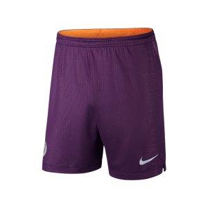 nike-manchester-city-short-ucl-2018-2019-f537-replicas-shorts-international-textilien-940516.jpg