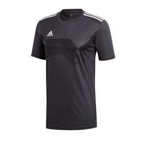adidas-campeon-19-trikot-grau-weiss-fussball-teamsport-textil-trikots-du2297.png