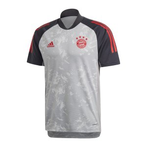 adidas-fc-bayern-muenchen-ucl-trainingsshirt-grau-fr5334-fan-shop_front.png