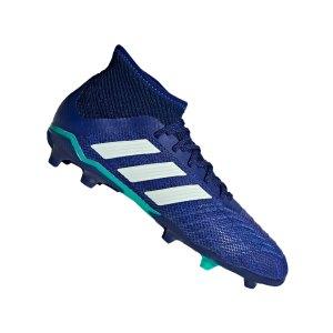 adidas-predator-18-1-fg-j-kids-blau-gruen-fussballschuhe-footballboots-firm-ground-kinder-children-cp8874.png