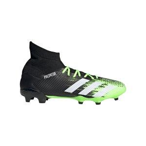 adidas-predator-20-3-fg-gruen-weiss-eh2926-fussballschuh_right_out.png