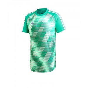 adidas-tango-graphic-jersey-trikot-gruen-fussballkleidung-kurzarm-shortsleeve-trainingsoutfit-cv9843.png