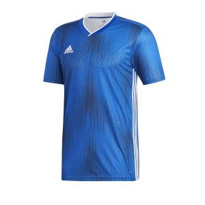 adidas-tiro-19-trikot-kurzarm-blau-weiss-fussball-teamsport-textil-trikots-dp3532.png