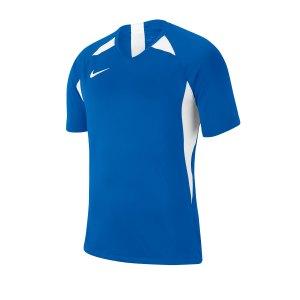 nike-striker-v-trikot-kurzarm-kids-blau-f463-fussball-teamsport-textil-trikots-aj1010.png
