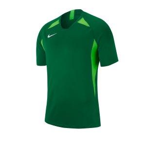 nike-striker-v-trikot-kurzarm-gruen-f302-fussball-teamsport-textil-trikots-aj0998.jpg