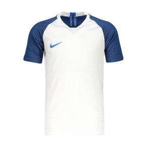 nike-strike-trikot-kurzarm-kids-weiss-f102-fussball-teamsport-textil-trikots-aj1027.png