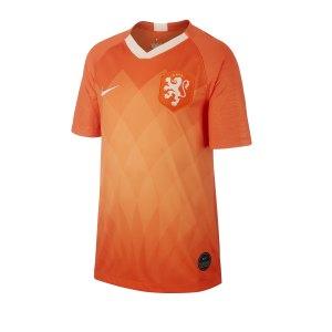 nike-niederlande-trikot-home-kids-2019-orange-f819-replicas-trikots-nationalteams-aj4445.png