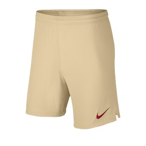 nike-galatasaray-istanbul-short-away-19-20-f248-replicas-shorts-international-aj5706.jpg
