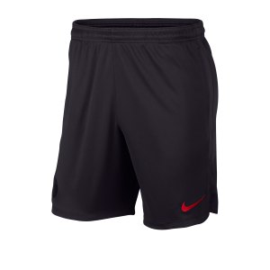 nike-paris-st-germain-dry-strike-short-f080-replicas-t-shirts-international-ao5292.jpg