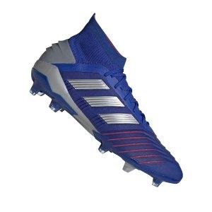 adidas-predator-19-1-fg-blau-silber-fussballschuhe-nocken-rasen-bb9079.jpg