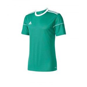 adidas-squadra-17-trikot-kurzarm-gruen-weiss-teamsport-jersey-shortsleeve-mannschaft-bekleidung-bj9179.png