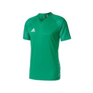 adidas-tiro-17-trainingsshirt-gruen-fussball-teamsport-ausstattung-mannschaft-bq2803.png