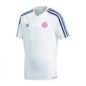 adidas-fc-bayern-muenchen-trainingsshirt-weiss-shirt-replica-freizeit-mannschaftssport-ballsportart-bq4593.jpg