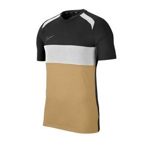 nike-academy-trainingstop-t-shirt-f010-bq7352-fußballtextilien.jpg