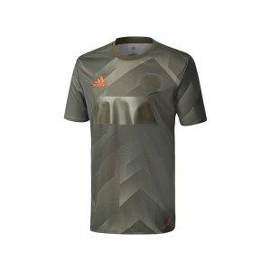 adidas-tango-player-jersey-t-shirt-gruen-fussball-teamsport-mannschaft-ausstattung-verein-br3723.png