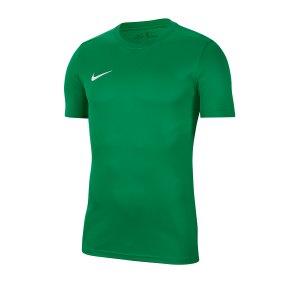 nike-dri-fit-park-vii-kurzarm-trikot-gruen-f302-fussball-teamsport-textil-trikots-bv6708.jpg