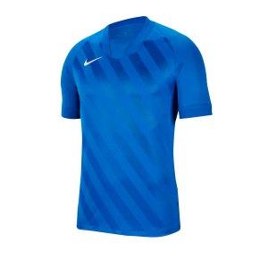 nike-challenge-iii-trikot-kurzarm-kids-f463-fussball-teamsport-textil-trikots-bv6738.png