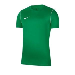 nike-dri-fit-park-t-shirt-gruen-f302-fussball-teamsport-textil-t-shirts-bv6883.png