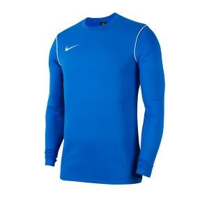 nike-dri-fit-park-crew-shirt-longsleeve-kids-f463-fussball-teamsport-textil-sweatshirts-bv6901.png