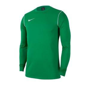 nike-dri-fit-park-crew-shirt-longsleeve-kids-f302-fussball-teamsport-textil-sweatshirts-bv6901.png
