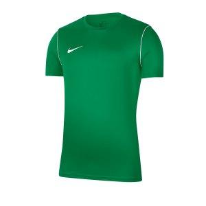 nike-dri-fit-park-trikot-kurzarm-kids-gruen-f302-fussball-teamsport-textil-trikots-bv6905.png