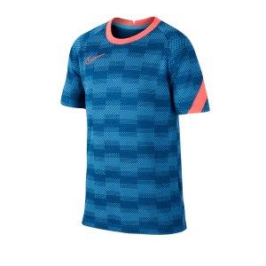 nike-dri-fit-academy-shirt-kurzarm-kids-blau-f446-fussball-teamsport-textil-t-shirts-cd1070.png