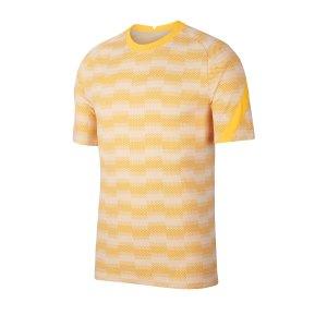 nike-dri-fit-academy-pro-shirt-kurarm-grau-f043-fussball-teamsport-textil-trikots-cd1072.png