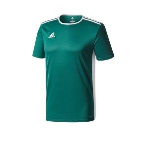 adidas-entrada-18-trikot-kurzarm-duneklgruen-teamsport-mannschaft-ausstattung-shirt-shortsleeve-cd8358.png