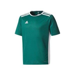 adidas-entrada-18-trikot-kurzarm-kids-dunkelgruen-teamsport-mannschaft-ausstattung-shirt-shortsleeve-cd8358.png