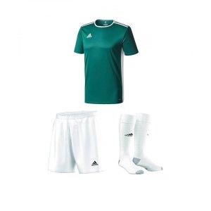 adidas-trikotset-entrada-18-dunkelgruen-weiss-trikot-short-stutzen-teamsport-ausstattung-cd8358.png
