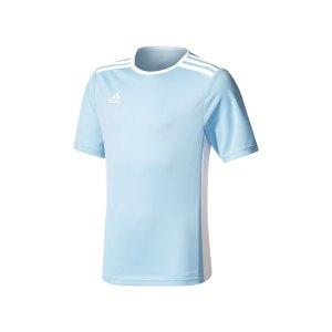 adidas-entrada-18-trikot-kurzarm-kids-hellblau-teamsport-mannschaft-ausstattung-shirt-shortsleeve-cd8414.png