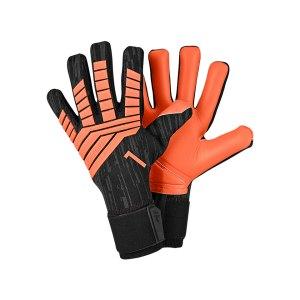 adidas-predator-lew-jaschin-tw-handschuh-schwarz-ce4933-equipment-torwarthandschuhe-goalkeeper-torspieler-fangen.jpg