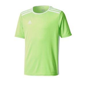 adidas-entrada-trikot-18-kids-hellgruen-weiss-fussball-teamsport-textil-trikots-ce9755.png