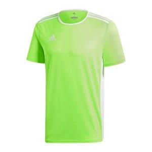 adidas-entrada-18-trikot-kurzarm-gruen-weiss-teamsport-mannschaft-ausstattung-shirt-shortsleeve-ce9758.jpg