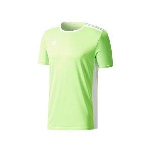 adidas-entrada-18-trikot-kurzarm-kids-gruen-weiss-teamsport-mannschaft-ausstattung-shirt-shortsleeve-cd9758.png