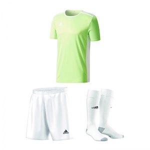 adidas-trikotset-entrada-18-gruen-weiss-trikot-short-stutzen-teamsport-ausstattung-ce9758.jpg