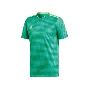 adidas-condivo-18-trikot-kurzarm-gruen-fussball-teamsport-football-soccer-verein-cf0683.jpg