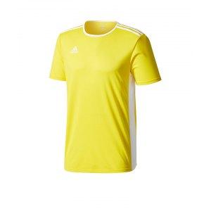 adidas-entrada-18-trikot-kurzarm-gelb-weiss-teamsport-mannschaft-ausstattung-shirt-shortsleeve-cd8390.png