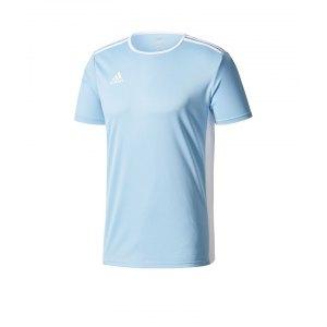 adidas-entrada-18-trikot-kurzarm-hellblau-weiss-teamsport-mannschaft-ausstattung-shirt-shortsleeve-cd8414.png