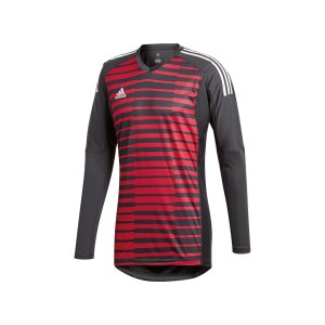 adidas-adipro-18-torwarttrikot-langarm-grau-pink-football-fussball-teamsport-football-soccer-verein-cf6173.jpg