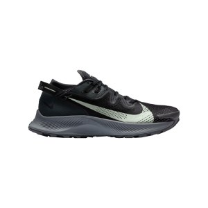 nike-pegasus-trail-2-running-grau-schwarz-f002-ck4305-laufschuh_right_out.png