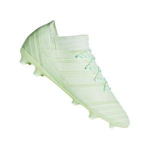 adidas-nemeziz-17-2-fg-gruen-nocken-rasen-trocken-neuheit-fussball-messi-barcelona-agility-knit-2-0-cp8973.png